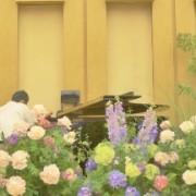 シャンソン コンサート
