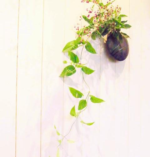 花選びについて